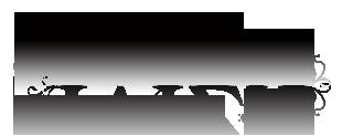 iviza_logo